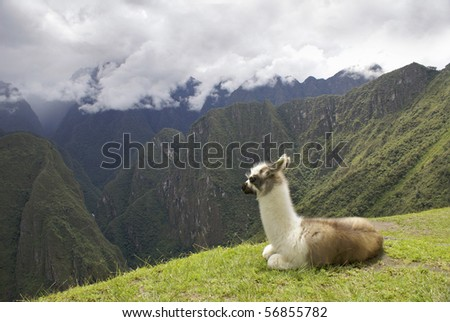 Dramatic view of Machu Pichu in the Peruvian Andes. - stock photo