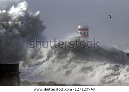 Dramatic wave during storm weather conditions.