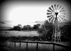 Dramatic Windmill Scenery