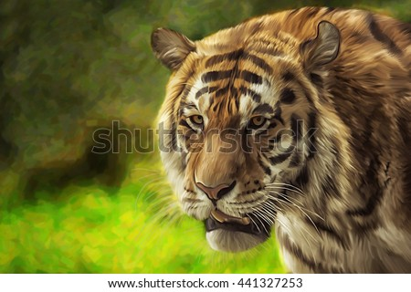 Drawing  bengal tiger portrait on a color background