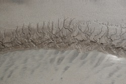 drawing in the sand at low tide