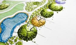 drawing landscape plan design