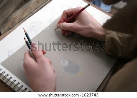 Drawing making sketches