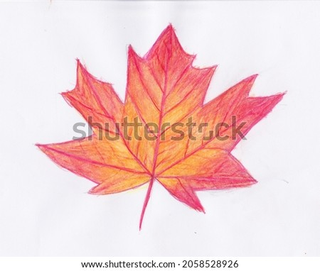 Drawing maple leaf. Maple leaf icon. Autumn season nature. Paint picture.