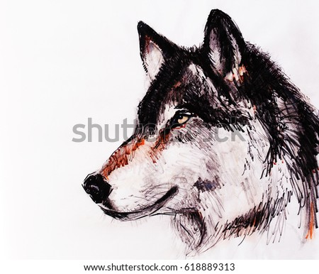 Drawing wolf on old paper, original hand draw.