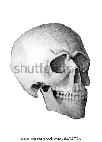 Drawn skull. View from the corner.