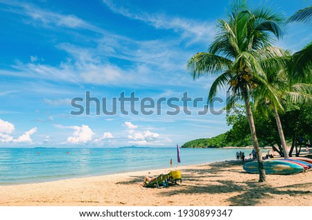 Dream beach with palm trees on the white sand, sun loungers, turquoise ocean and beautiful clouds in the sky.