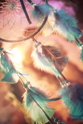 dream catcher on a magical forest