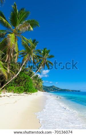 Dream Panorama Shore