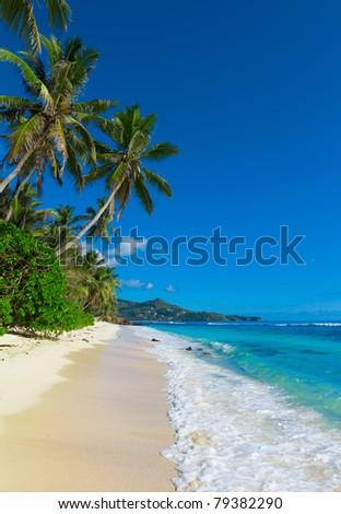 Dream Sea Summertime