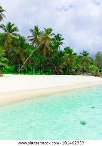 Dream Summertime Landscape