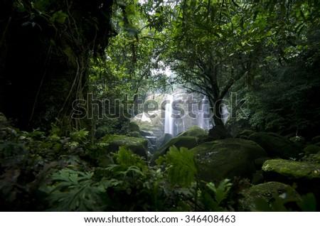 Dream waterfall deep in the jungle