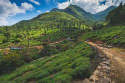 Dreamland, Wayanad, Kerala, India