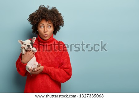 Dreamy beautiful woman with Afro hairdo, holds her best friend in hands, focused upwards, has so cute and lovable puppy, smiles while embraces pet, isolated over blue background with mock up space