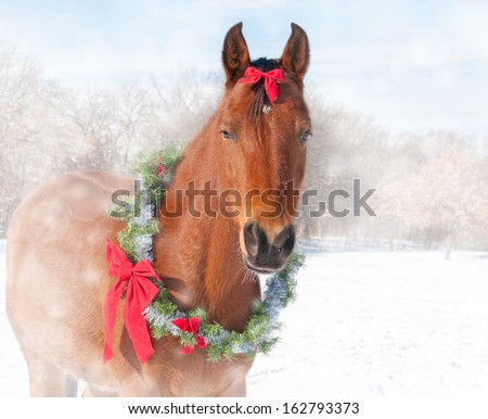Stock Photo Dreamy image of a red bay horse wearing a Christmas wreath and a bow