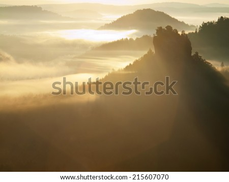 Dreamy misty  landscape. Majestic mountain cut the lighting mist. Deep valley is full of colorful fog and rocky hills are sticking up to Sun. Magnificent autumn morning.