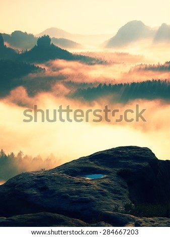 Dreamy misty landscape. Majestic mountain cut the lighting mist. Deep valley is full of colorful fog and rocky hills are sticking up to Sun.
