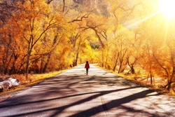 Dreamy Psychedelic Scene of Girl walking alone a road surrounded by Orange Trees during Sunny Day. Taken in Zion National Park, Utah, United States of America.
