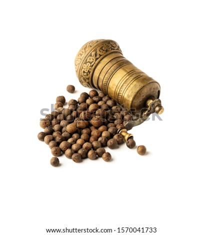 Dried allspice with mill on a white background #1570041733