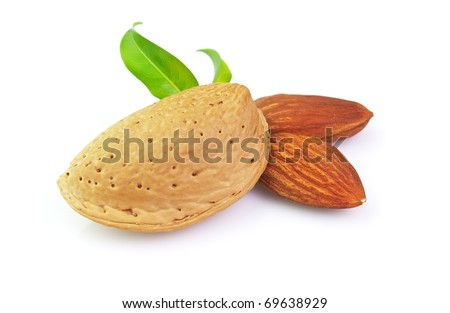 Dried almond with kernel