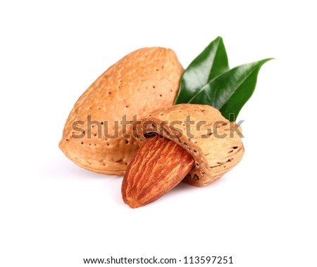 Dried almond with leaf