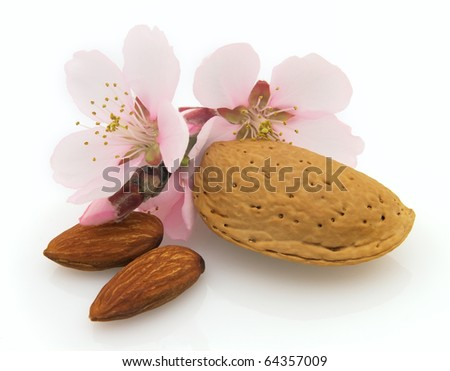 Dried almonds with pink flowers