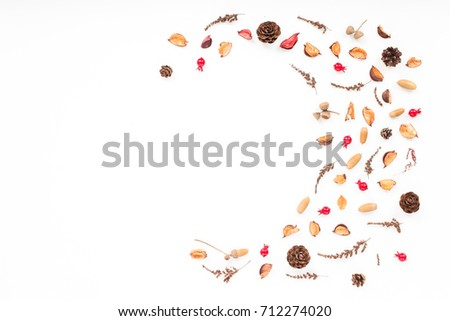 Dried autumn flowers on white background. Autumn frame. Flat lay, top view, copy space #712274020