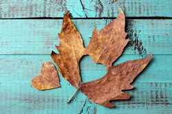 Dried autumn leaf with cutout heart on wooden background