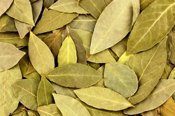 Dried bay leaves texture background