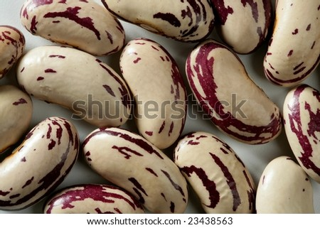 Dried beans macro at studio white background