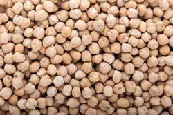 Dried chickpea beans. Close up. Background and texture.