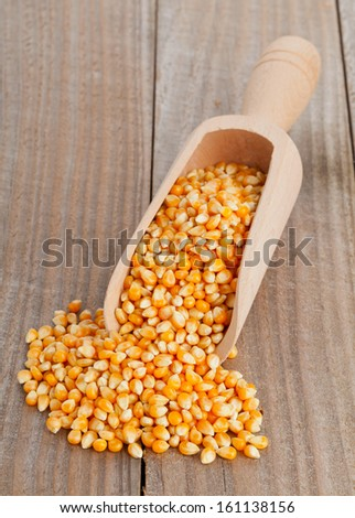 Dried corn kernels in wooden scoop on wood background
