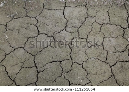 Dried cracked earth - stock photo