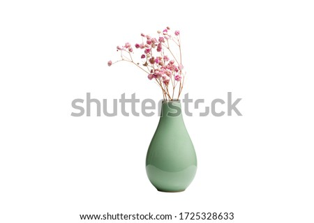 Dried decorative pink flowers in greenish ceramic vase isolated on white background. Macro and close-up. Stockfoto ©