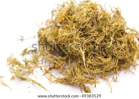 dried dill weed on white background