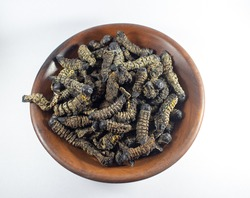 Dried edible mopane worms (Gonimbrasia belina), a type of emperor moth, a popular African delicacy