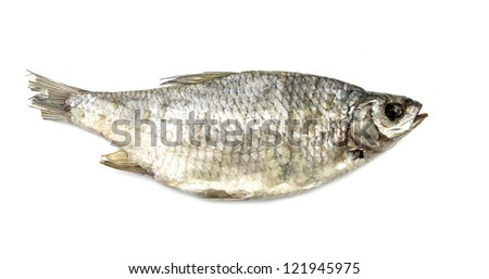 Dried fish, dried on a white background