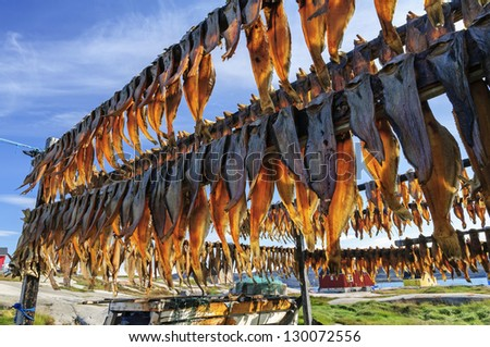 dried fish in rodebay settlement greenland drying is a method of food preservation that works. Black Bedroom Furniture Sets. Home Design Ideas