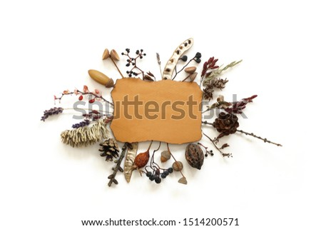 Dried flowers and berries composition around ragged sheet of paper . Beautiful autumn treasures #1514200571