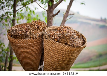 Dried flowers in a basket