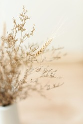 Dried flowers in the vase. kinfolk and minimalism style