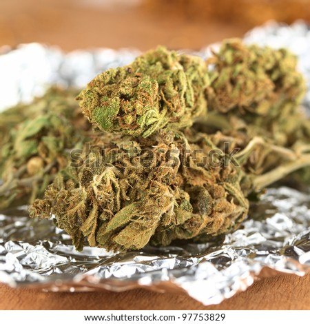 Dried flowers of Cannabis sativa on tinfoil (Selective Focus, Focus on the front of the two heads in the front) - stock photo