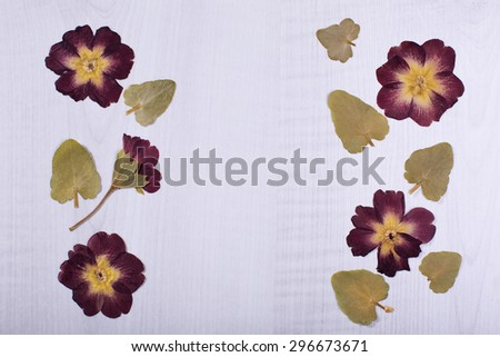 dried flowers or craft flowers on crumpled paper