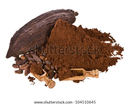 dried fruit of cocoa, cocoa powder and beans with a wooden spoon isolated on white background