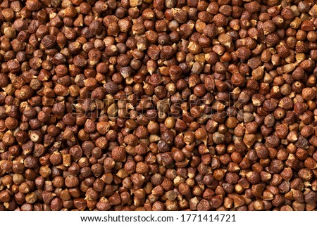 Dried grains of paradise close up full frame Photo stock ©