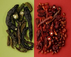 Dried green and red chili peppers on same color divided background. Different hot peppers varieties. Variety of shapes and colors.
