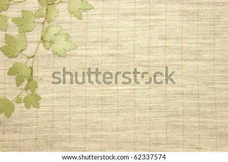 Dried green leaves over natural linen striped textured fabric textile