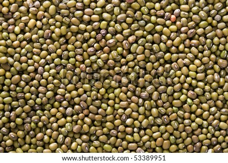 Dried  green mung beans: close-up
