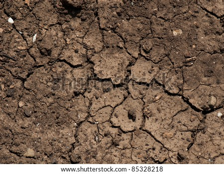 dried ground covered with cracks. background for design