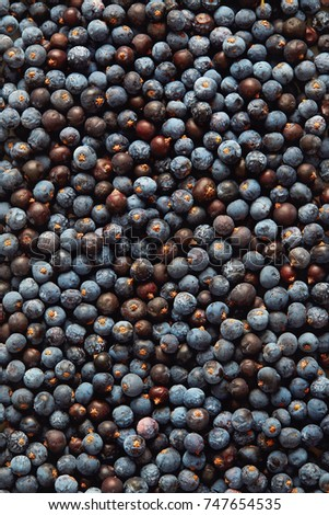 Dried Juniper Berries Background #747654535